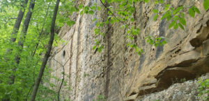 Red River Gorge Guided Climbing Pricing, Red River Gorge Guided Rappelling, Climbing Clinics, Climbing Courses