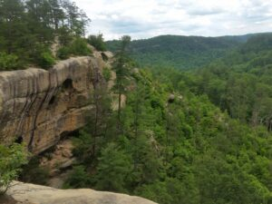 Guided Rappelling in Red River Gorge, Guided Rappelling, Guided Climbing in Red River Gorge, Red River Gorge Activities, Stuff to do in Red River Gorge, Bluegrass Climbing School, Southeast Mountain Guides, Red River Gorge Guides, Red River Climbing Guides